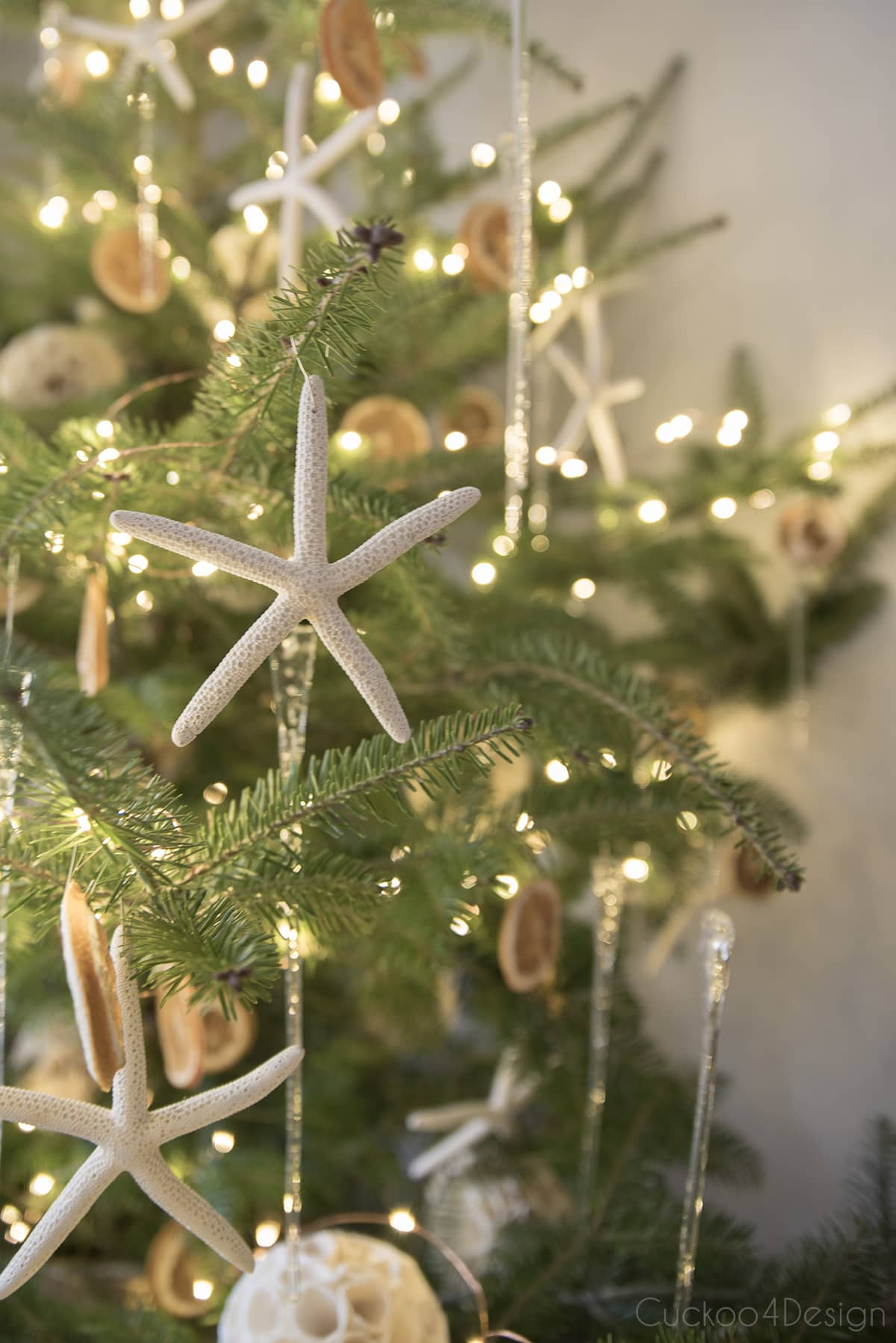 starfish ornaments on live tabletop Christmas tree
