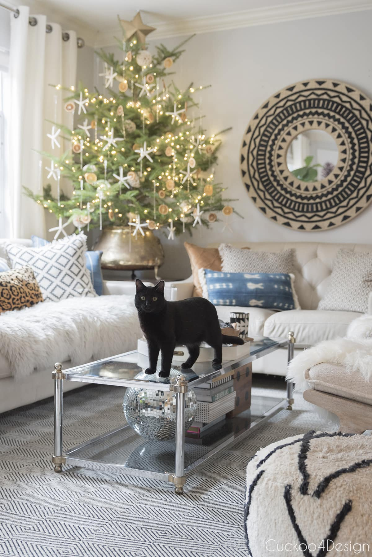 black cat on our coffee table with live tabletop Christmas tree in the corner