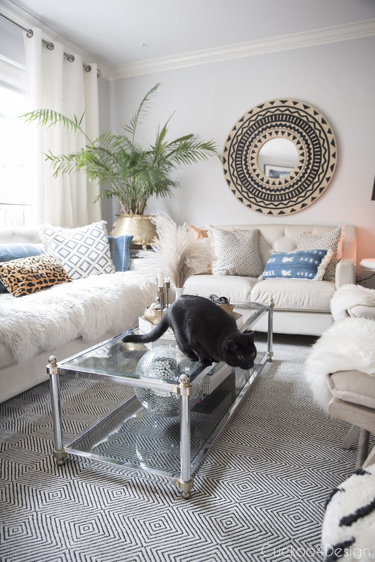 cat jumping on furniture