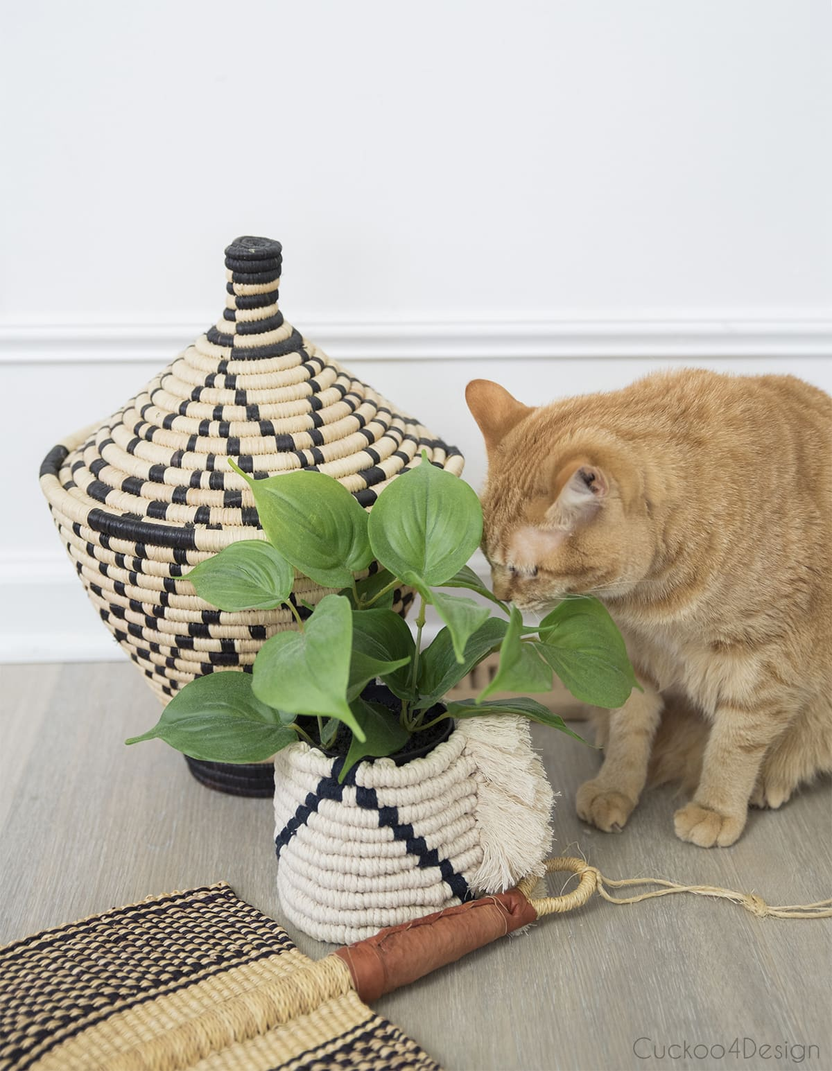 cat sniffing faux plants