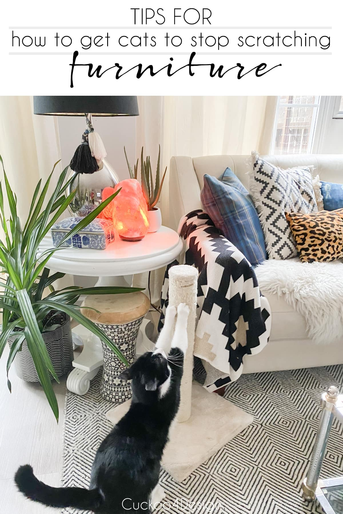 tips for how to get cats to stop scratching furniture
