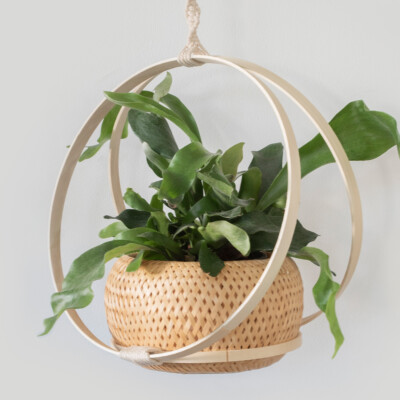 How to make a hanging basket with hoops
