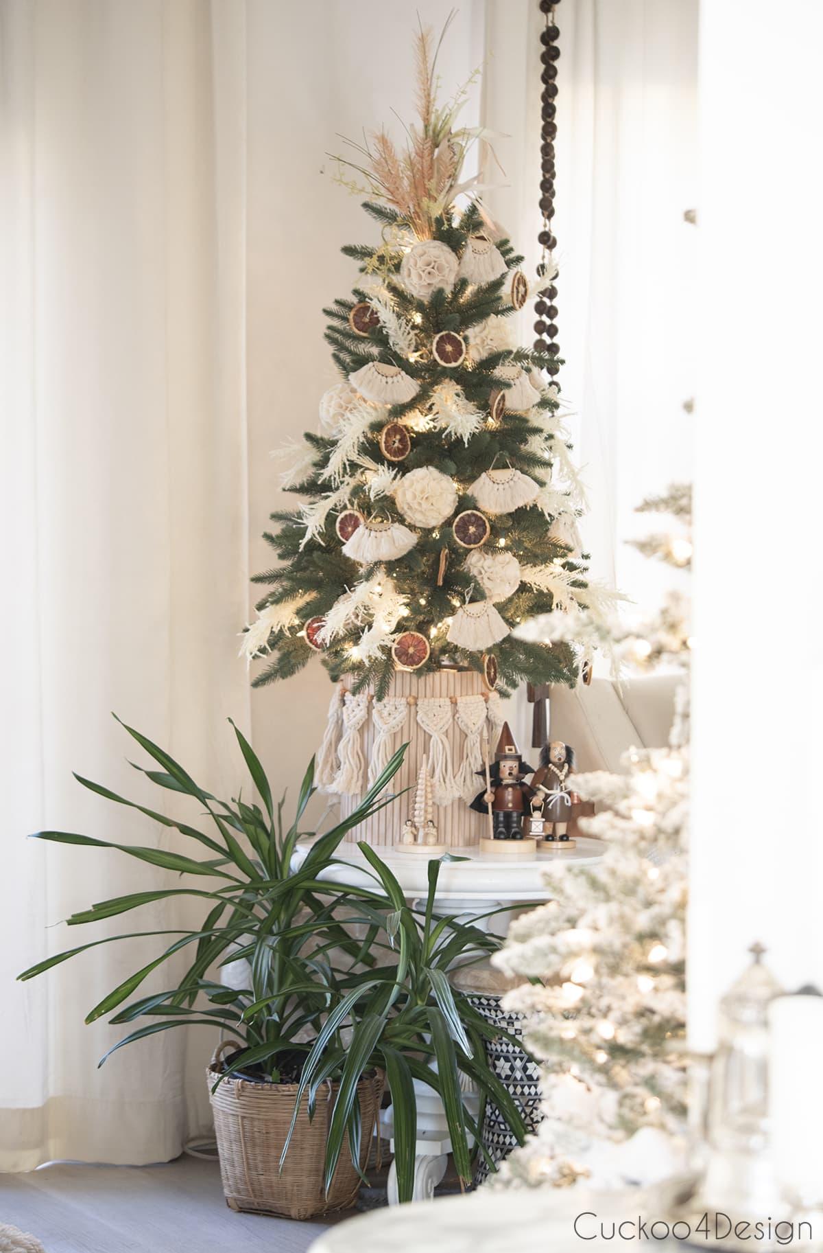 plant under boho Christmas tree