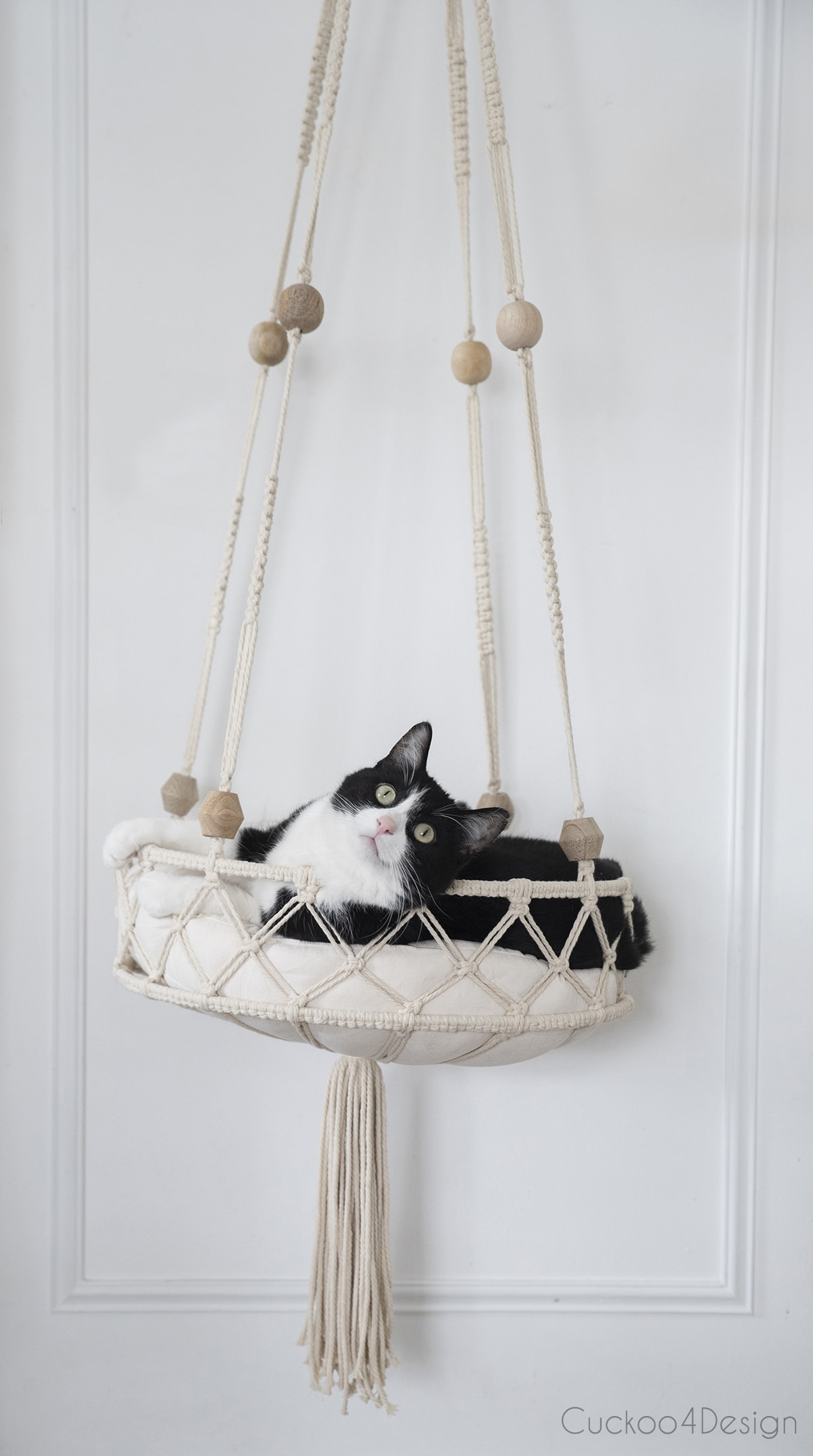 front view of cat and hanging macramé cat bed