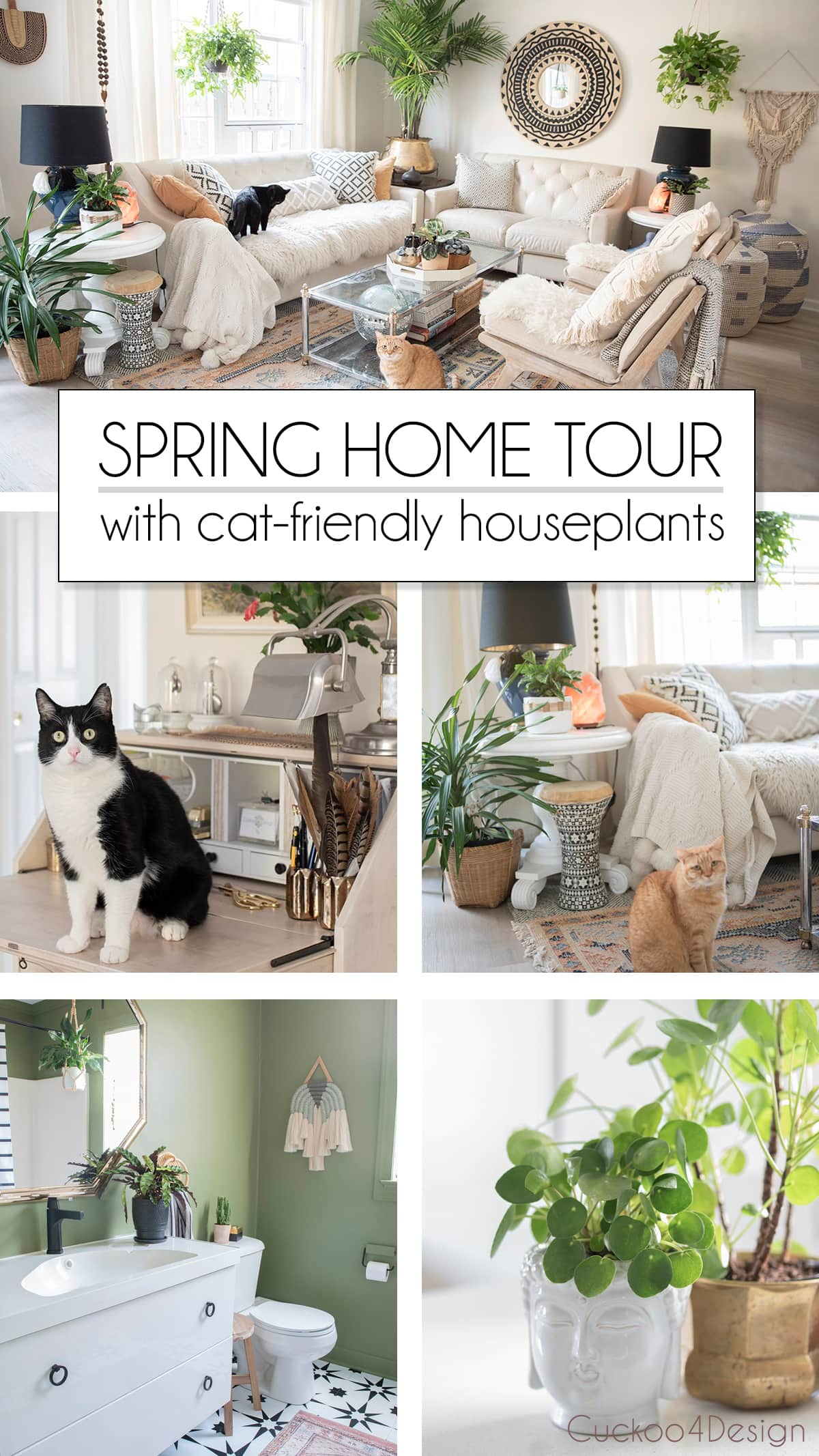 spring home tour with beautiful house plants that are cat-friendly