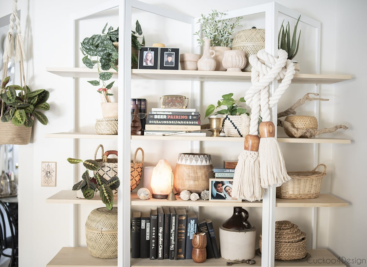 curated wooden bookshelf with beautiful house plants