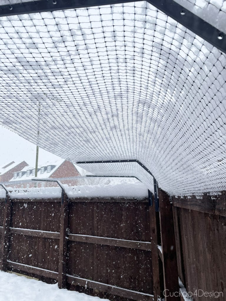 cat fence topper covered in snow