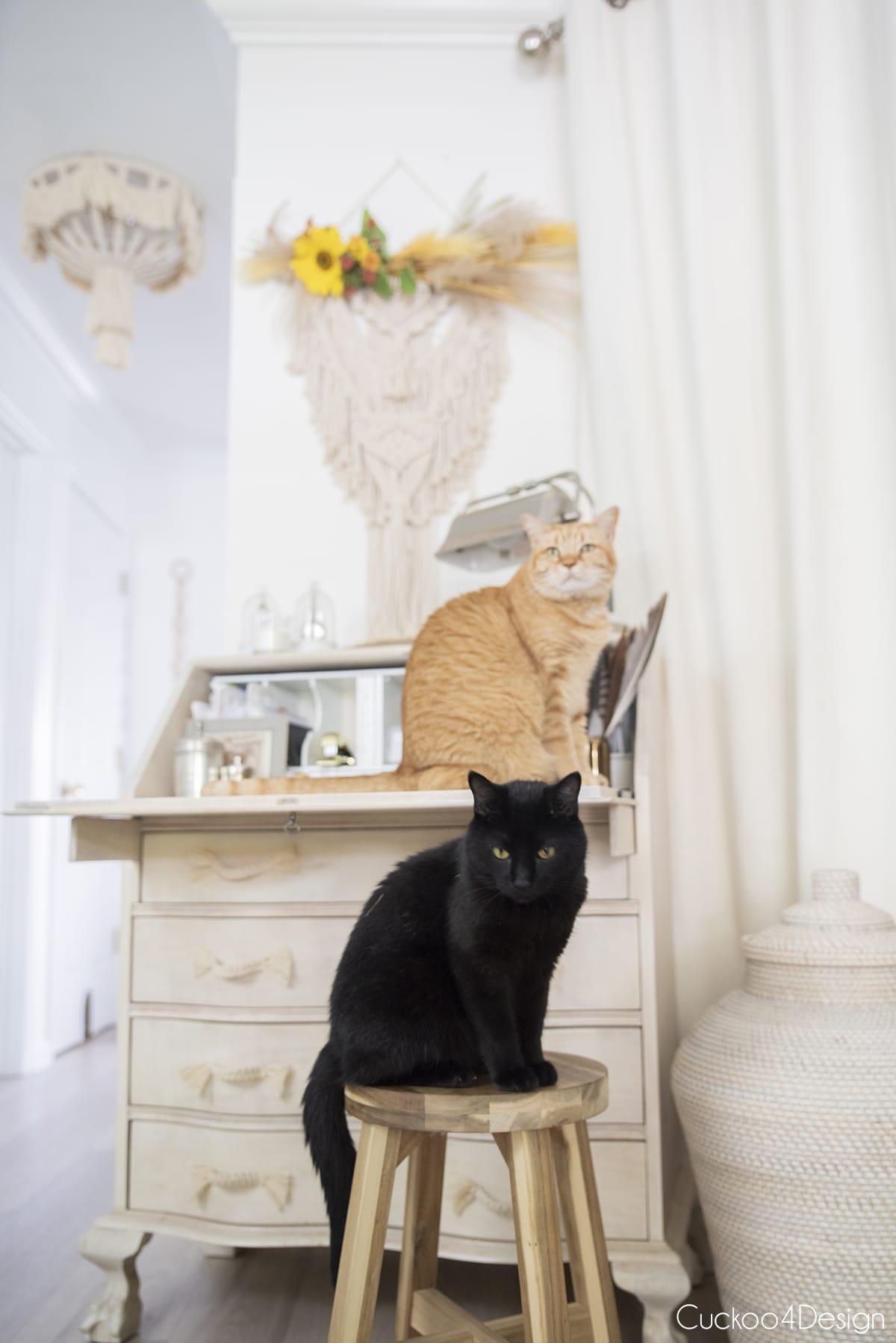 two cats sitting on secretary desk below simple boho fall decor